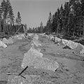 Finnish defense line 1944.jpg