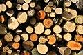 Firewood (184189073).jpeg