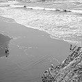 Fisherman and Seagulls, Sutro Baths, San Francisco (35413354693).jpg