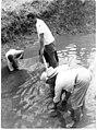 Fishing in Sāmoa (49800159511).jpg