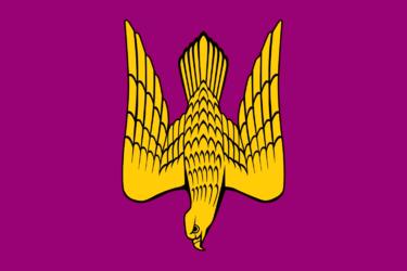 Современный Флаг Староладожского сельского поселения