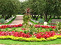 Flowerbeds in apple orchard (Kolomenskoye) 12.JPG