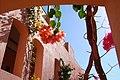 Flowers1 - panoramio.jpg