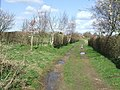 Footpath Junction - geograph.org.uk - 1226228.jpg
