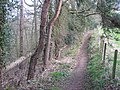 Footpath alongside woodland south of Acomb - geograph.org.uk - 1269404.jpg