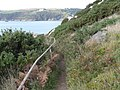 Footpath below Brownstone, looking towards Dartmouth harbour entrance - geograph.org.uk - 1544581.jpg