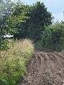 Footpath near Everleigh - geograph.org.uk - 1453701.jpg