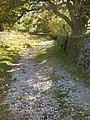 Footpath near Hart Head Farm - geograph.org.uk - 1544827.jpg