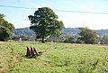 Footpath near Motcombe - geograph.org.uk - 588976.jpg