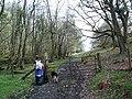 Footpath to Capel Garmon - geograph.org.uk - 165744.jpg