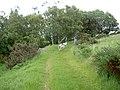 Footpath to Pen-Llan-y-Gwr. - geograph.org.uk - 833553.jpg