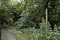 Footpath to Staynall - geograph.org.uk - 867422.jpg