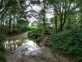 Ford near Stockwith Mill - geograph.org.uk - 581418.jpg