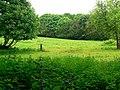 Former garden of Milner Field - geograph.org.uk - 1356304.jpg