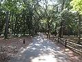 Fort Raleigh National Historic Site, Manteo, Roanoke Island, North Carolina (14459306824).jpg