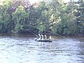 Four men in a boat - geograph.org.uk - 633054.jpg
