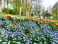 Frühling im Bad Mergentheimer Kurpark. 21.jpg