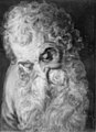 Frans Floris - An Old Man's Head - KMSsp167 - Statens Museum for Kunst.jpg