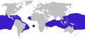 Fregata distribution.png