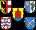 GVV Meersburg.png