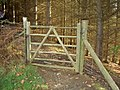 Gate into Wood. - geograph.org.uk - 624553.jpg