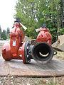 Gate valve 6215.jpg