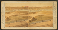 General view, Boston Public Garden, from Robert N. Dennis collection of stereoscopic views.png