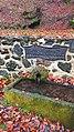 Geo-Top Route Bad Bertrich - Maischquelle - 02.jpg