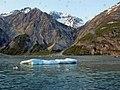 Glacier Bay - panoramio.jpg