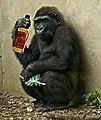 GorillaBourbon.jpg