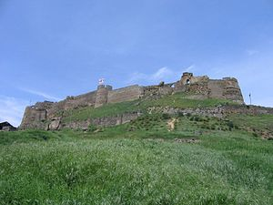 Gori Fortress - The Gori fortress