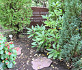 Grabstätte Potsdamer Chaussee 75 (Niko) Hanne Sobeck.jpg