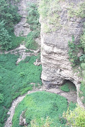 Grand Gulf cave 1-02Aug07.jpg