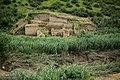 Great Wall of Gorgan 20160522 15.jpg