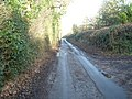 Greaves Lane - geograph.org.uk - 649409.jpg