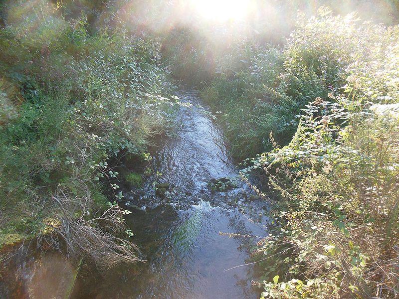 Grentzbach-Muehlgraben Brook between Montbronn, Meisenthal and Soucht