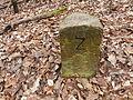 Grenzstein F und Z (Nr 24 ?).JPG