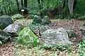 Großsteingrab Flögeln 1 16.JPG