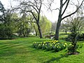 Grounds at the University of Surrey - geograph.org.uk - 1210032.jpg