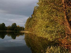 Gwda - Gwda River near Piła.