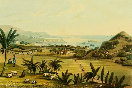 Hakewill, A Picturesque Tour of the Island of Jamaica, Plate 11.jpg