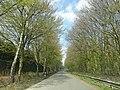 Hamm, Germany - panoramio (4494).jpg