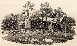 A History of British Birds - Hanging washing with pigs and chickens: an uncaptioned tail-piece in Volume 1: Land Birds. Like many others, this has a humorous touch, with a bird leaving muddy footprints on a newly laundered shirt.