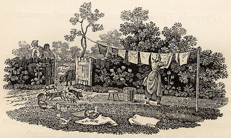 Hanging Washing with Pigs and Chickens tail-piece in Bewick British Birds 1797