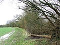 Harcamlow Way - geograph.org.uk - 734606.jpg