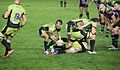Harlequins vs Saints (9756512061).jpg