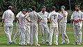 Hatfield Heath CC v. Thorley CC on Hatfield Heath village green, Essex, England 31.jpg