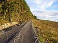 Heading up a Forest road - geograph.org.uk - 507282.jpg