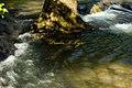 Hendersonville, TN, USA - panoramio.jpg