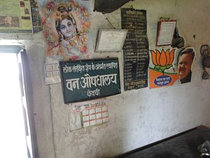 Bilaspur district, Chhattisgarh - Herbal Dispensary established by Chhattisgarh Government at Keonchi, Chhattisgarh, India.